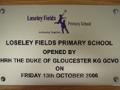 ali_losley_fields